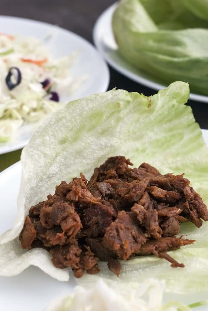 low-carb-pulled-pork-2